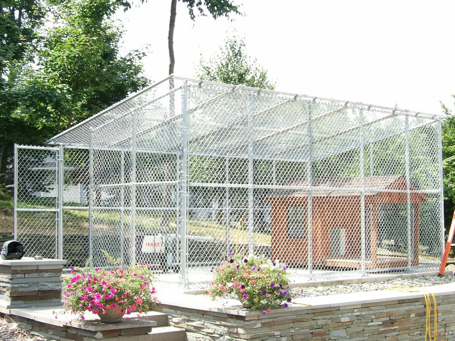 Galvanized Enclosure for Dogs