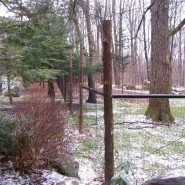 Deer Fence Constructed with Cedar Posts and Black Welded Wire