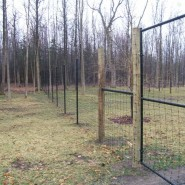 Deer Fence Constructed with Black Woven Wire, Black Steel Posts, and Pressure Treated Brace Posts