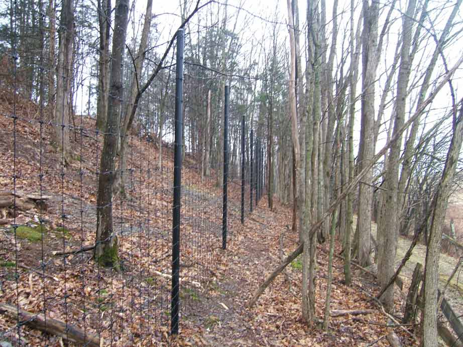 Deer Fence with Woven Wire and Steel Posts | Kuperus Custom Fence