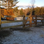 3 Rail Horse Fence With 8' Gate